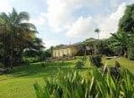 View garden to house