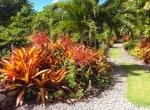 Palm terrace - Exterior 5